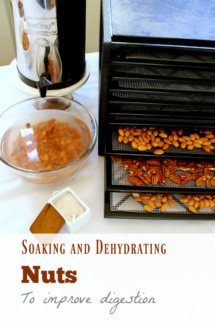 soaking-and-dehydrating-nuts-to-reduce-phytic-acid