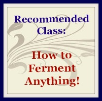 how to ferment anything