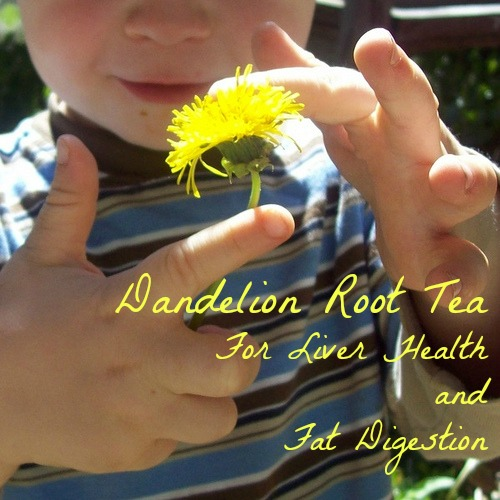 dandelion root tea liver health