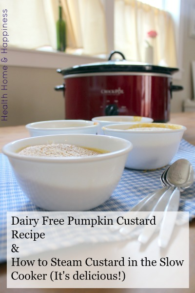 Crockpot pumpkin custard