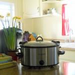 GAPS Grain Free Paleo Crockpot Slow Cooker Recipes