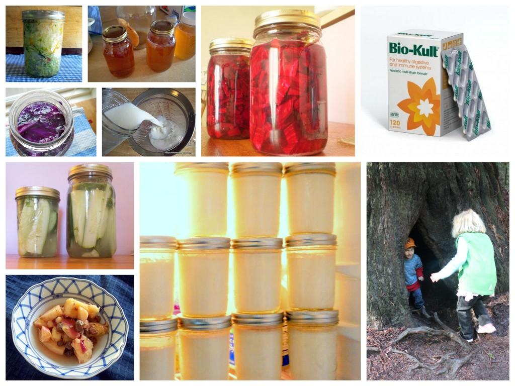Probiotics 10 ways
