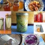 10 Ways to get probiotics
