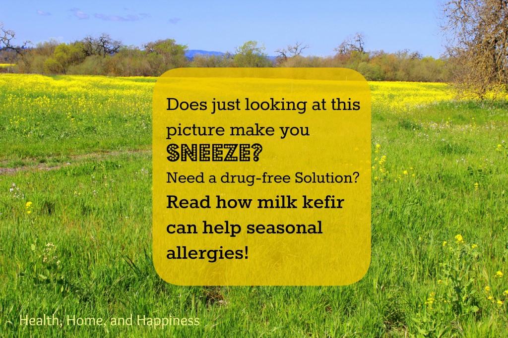 kefir for seasonal allergies pin