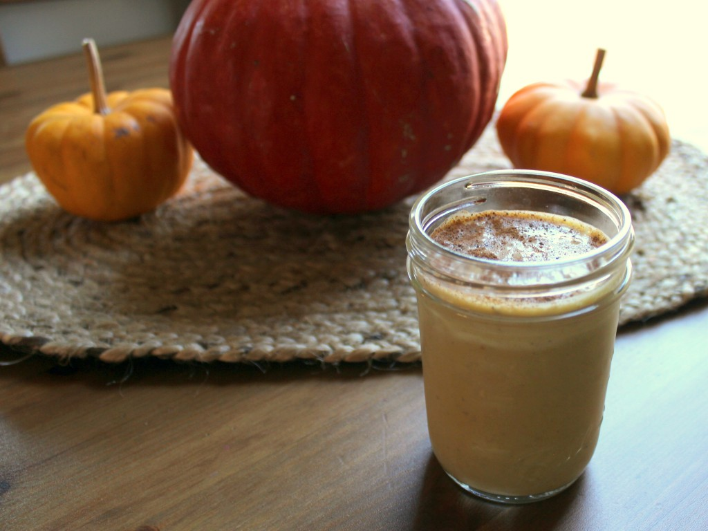 Pumpkin Smoothie Recipe — Dishmaps