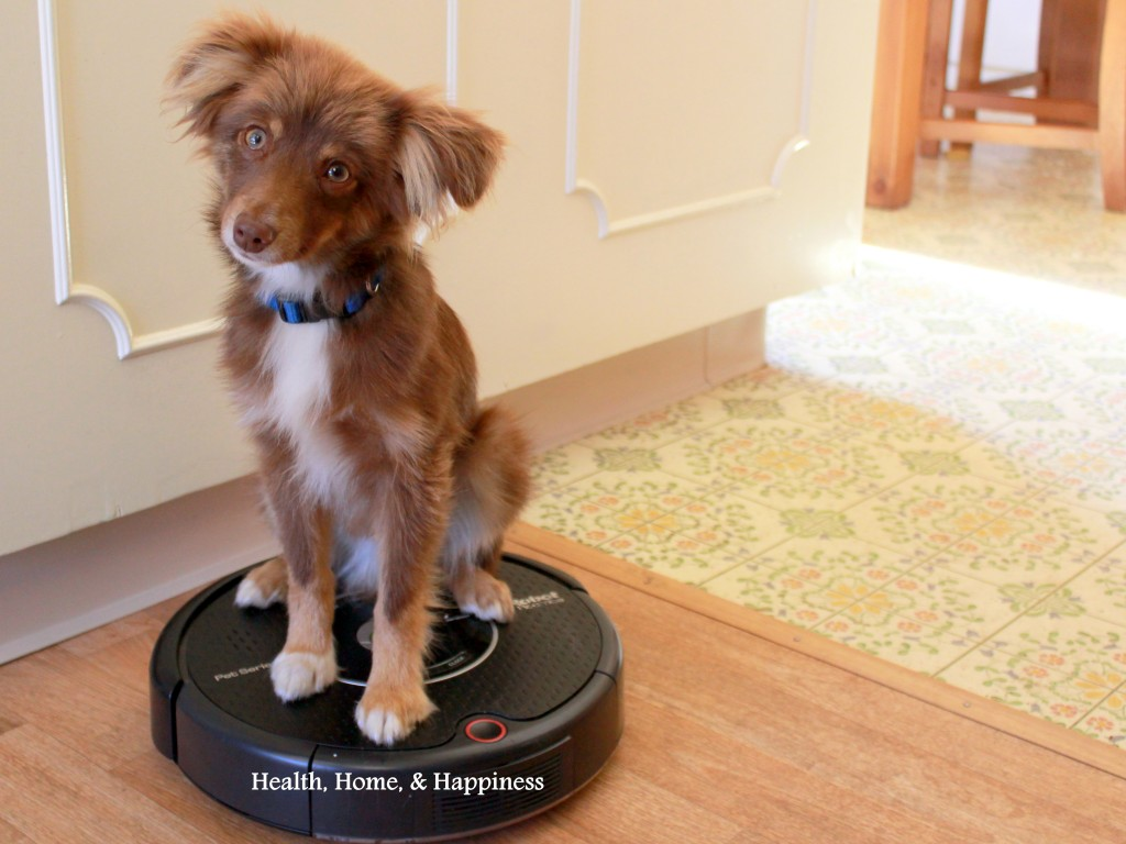 Roomba Pet Series Review