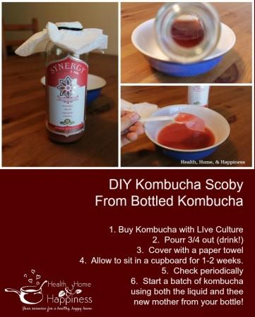 DIY Kombucha Scoby from store kombucha