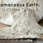 Diatomaceous Earth - what it is and how to use it