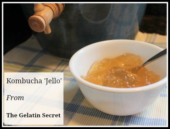kombucha jello recipe