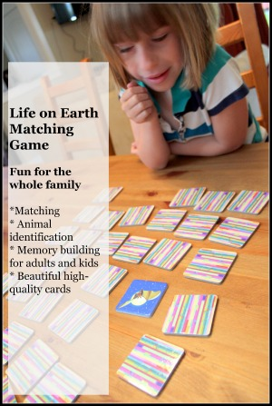 matching game product review - great learning toy