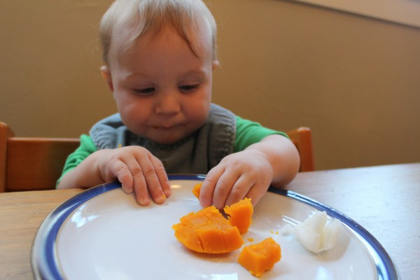 Baby lead weaning easy squash bake and flash freeze for later