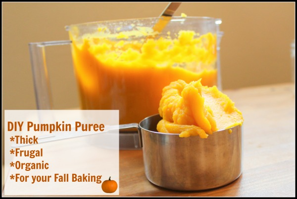 DIY Pumpkin Winter Squash Puree that is Thick