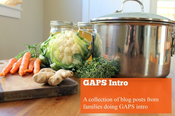 Links to blog posts about families doing the GAPS introduction diet