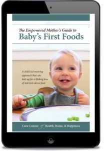 babys first foods the empowered mothers guide