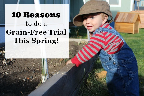 10 Reasons to do a grain free trial now that the weather is warming up