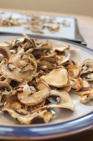 Dehydrator mushroom chips