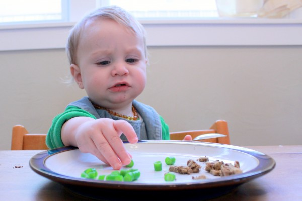 How Picky Eating Relates to Gut Flora
