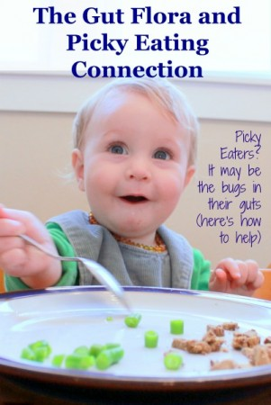 Picky Eating Relates to Gut Flora What What