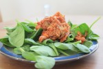 pulled pork on spinach