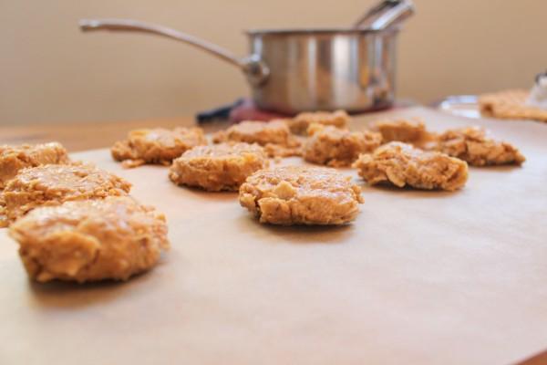 No bake in a pinch breakfast cookies