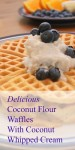 Coconut Flour Waffles for Breakfast and then the Freezer