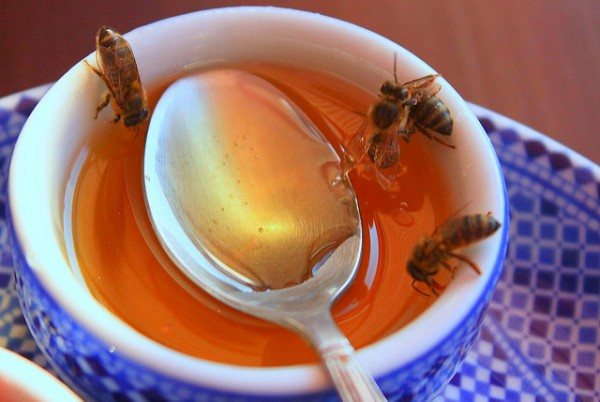 honey in a cup with a spoon and bees crawling in