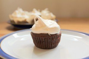 Perfect Chocolate Coconut Flour Cupcakes