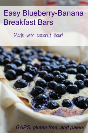 Coconut Flour Blueberry Banana Bread