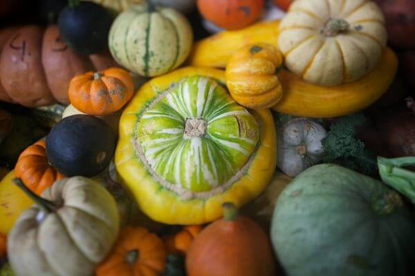 Winter Squash - 12 recipes