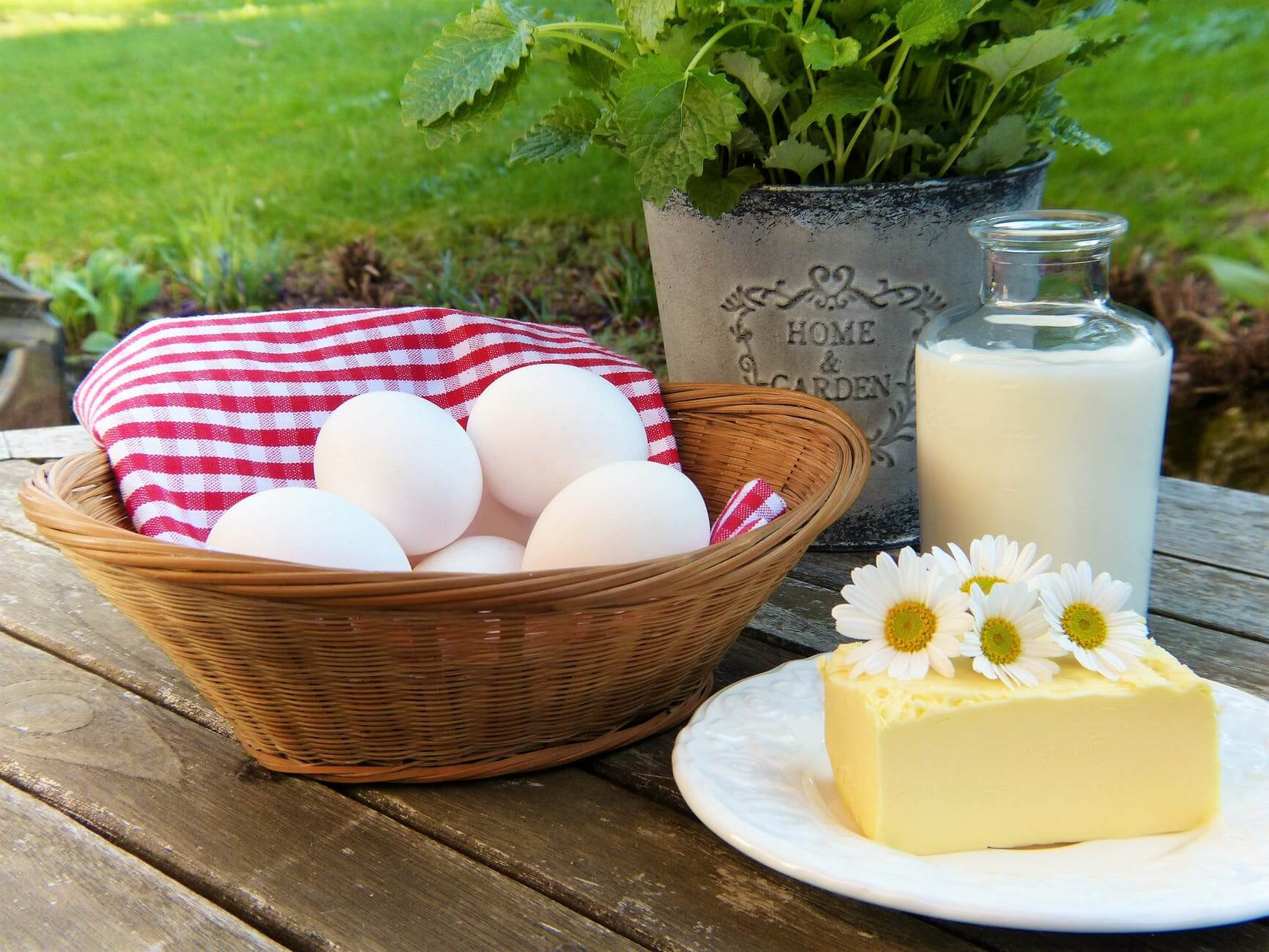 Saturated Fat is No Longer Discouraged: Journal of American College of Cardiology