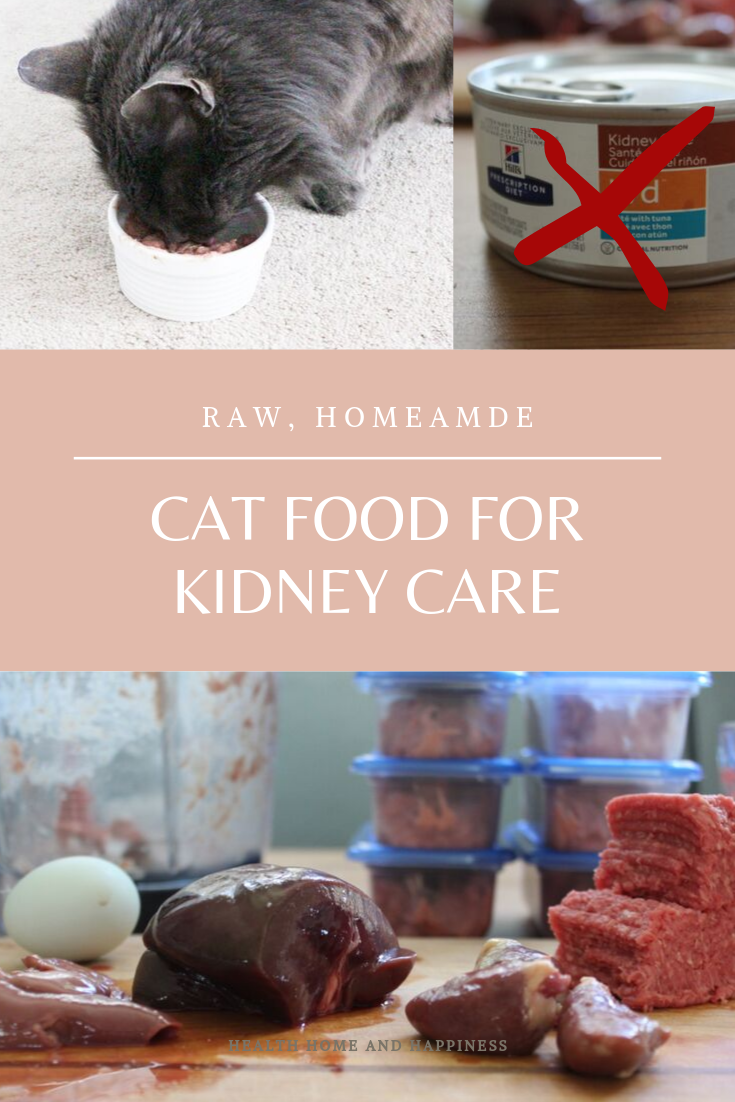 Raw Homemade Kidney Care Diet for Cats