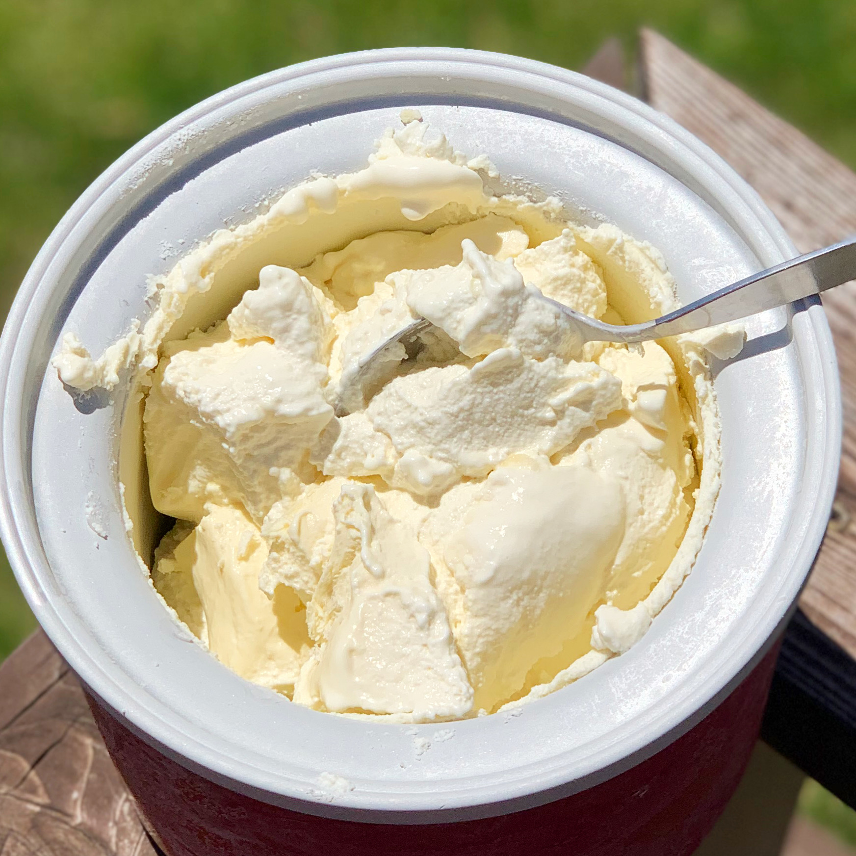 Yummy Homemade Lemon Ice Cream (Keto, GAPS, Dairy-Free)
